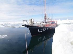 Арктическая регата