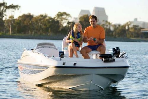 Bayliner Deck Boat 217 3036