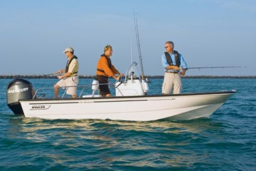Boston Whaler 170 Montauk 3655