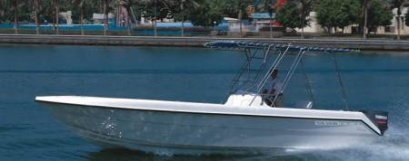 Silver-craft 31CC